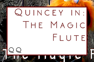 Magic Flute – Q&Q Style